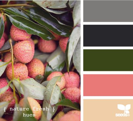 nature fresh huesColors Combos, Food Style, Design Seeds, Nature Fresh, Colors Palettes, Fresh Hues, Colors Schemes, Fresh Green, Colors Inspiration
