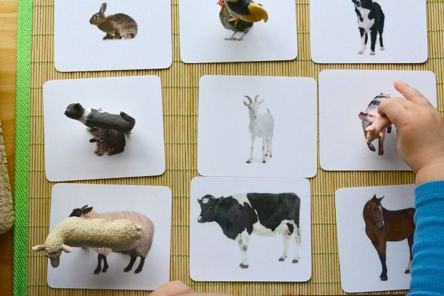 Object to card matching with Farm Animals: 3-dimensions to 2-dimensions...moving from the concrete to abstract ideas