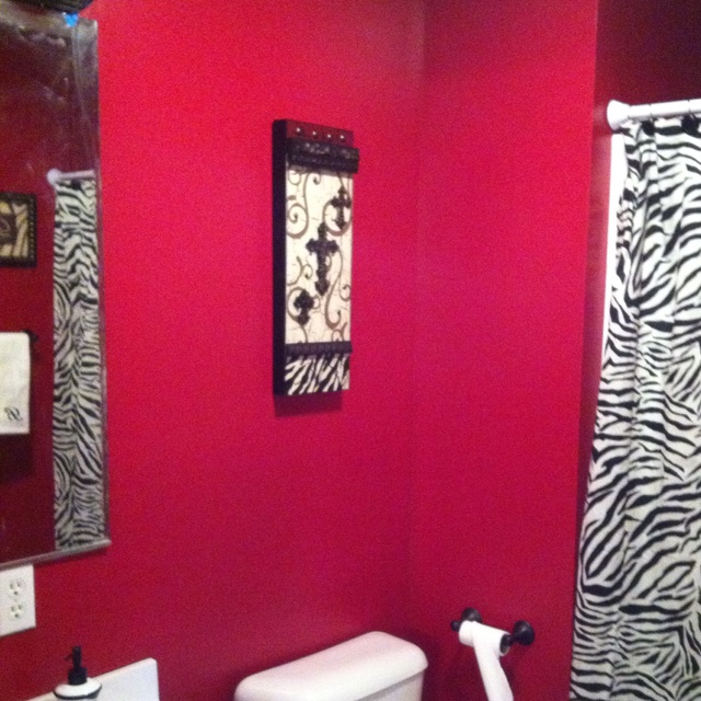 Red And Zebra Bathroom Decor: 17 Best Ideas About Zebra Bathroom Decor On Pinterest