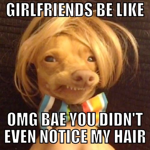 I know someone like this (blonde wig and all).