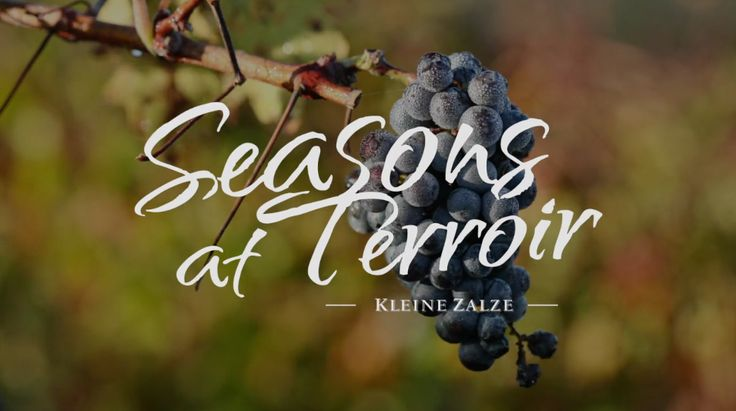 Season's at Terroir 18:15 on DSTV channel 181 every Tuesday, repeats on Thursday same time.