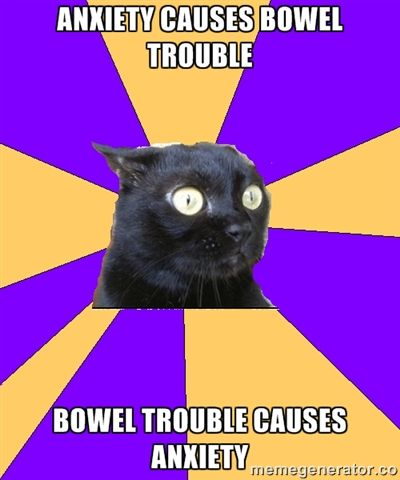 Anxiety Cat: Anxiety causes bowel trouble. Bowel trouble causes anxiety.