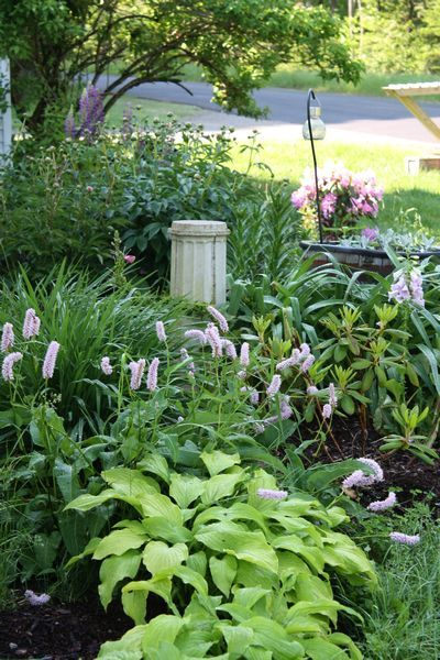 What's remarkable In My Garden this week? I've added new herbs and perennials. There's a bit of work finished in the high tunnel. via @RobinFollette