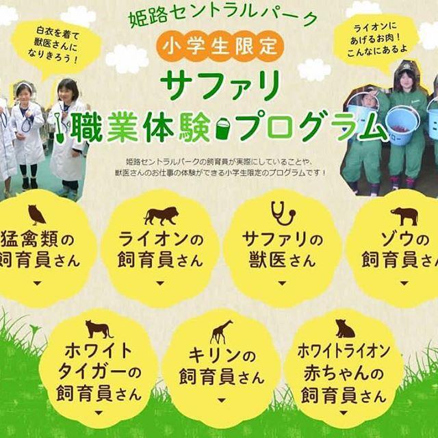 hcpsafari 明日14時より8/1~8/31までの小学生限定 サファリ職業体験プログラムの予約が始まります★ ホワイトライオン赤ちゃんの飼育体験のみ 8/1~8/6までの限定ですのでご注意ください! 詳しくはHPまで♪→http://www.central-park.co.jp/enjoy/workexperience/ Himeji Central Park 2017/07/26 18:27:49