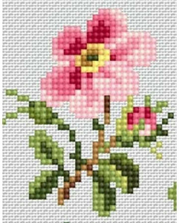 Wild rose cross stitch. Flowers X-S.