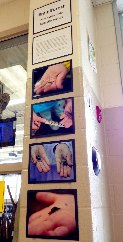 Little Hands, Little Discoveries documentation wall
