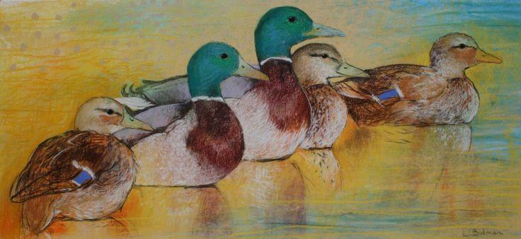 Eenden - Loes Botman pastels, pastelkrijt tekeningen