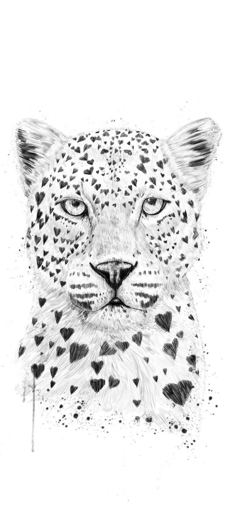 Love Leopard <3
