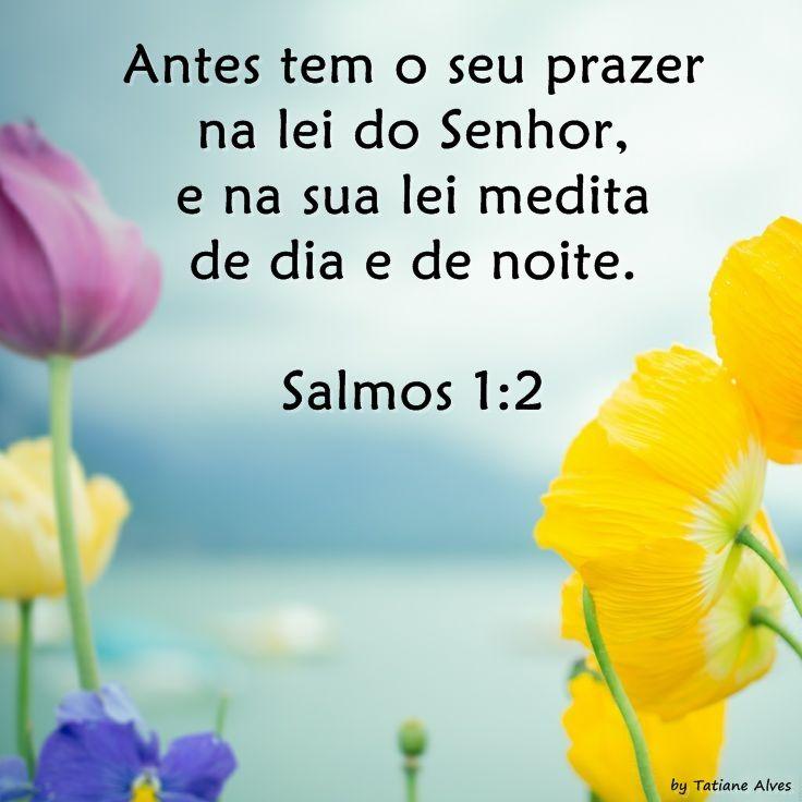 Salmos 1: 2