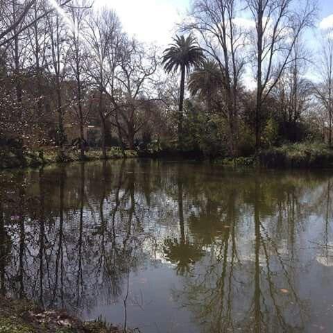 Parque das Caldas da Rainha
