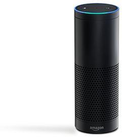 amazon echo. voice control everything?