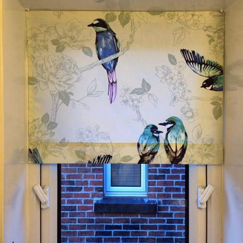 Birds Of Paradise A Beautiful Blind Made Using Our
