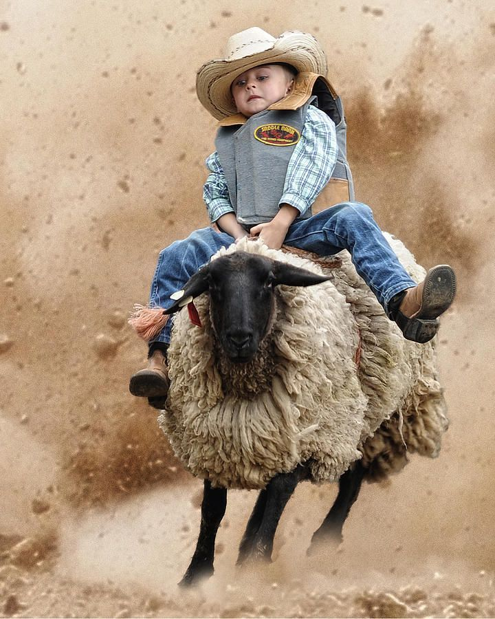 """"""" And another cowboy was born.-Chris Ledoux """"...Justin and I watched this at the rodeo last year, those kids were fearless:)"""