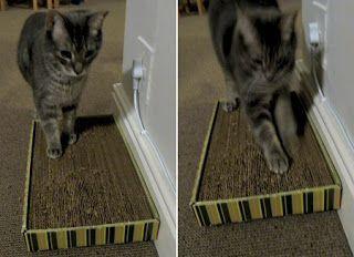 How to Make a Cat Scratcher? || Jak zrobić drapaczkę dla kota?