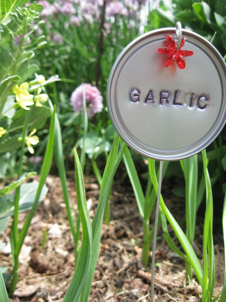 Notes From The Heartland: Garden Markers Made From Frozen Concentrated  Orange Juice Lids. Plant Markers ...