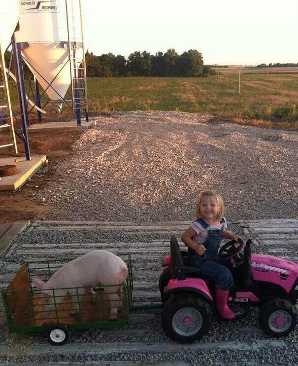 148 best People Behind Pork images on Pinterest | Pork, Farmers ...