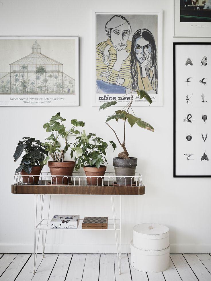 aarhus//planter