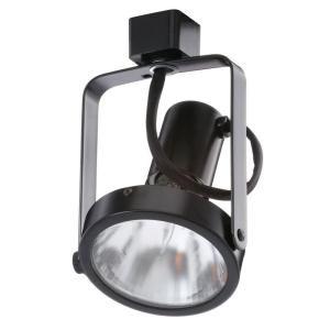 Juno PAR30 Basic Gimbal Black Track Lighting Head R533BL at The Home Depot - Mobile