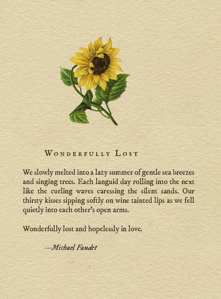michael faudet // wonderfully lost