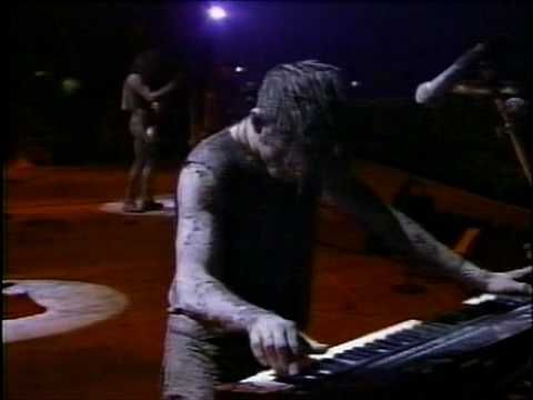 I want to fuck you like an animal: Nine Inch Nails: Closer Woodstock 1994 (Digitally Remastered)