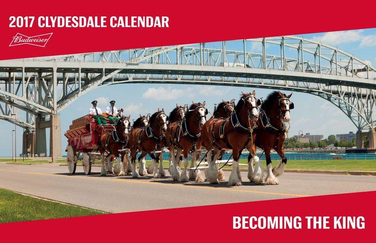2017 Budweiser Clydesdale Calendar