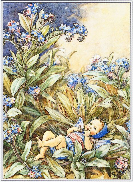 The Forget-me-not Fairy, via Flickr.