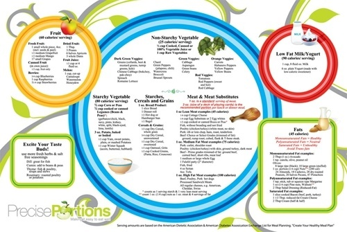 Healthy Eating Worksheets, $19.95 - portion control guide ...