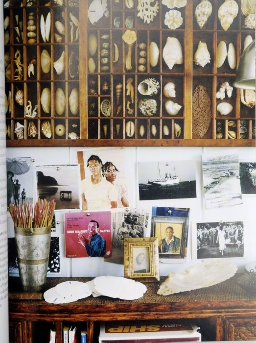 60 best images about INDIA HICKS on Pinterest Hurricane