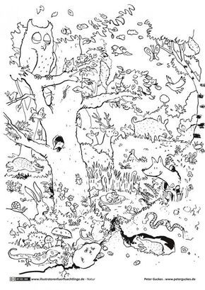 natur - wald tiere - guckes … | ausmalen, ausmalbilder