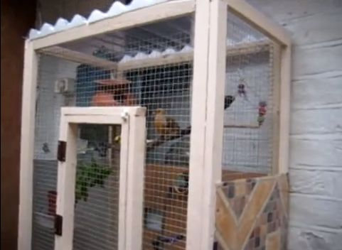 diy wood wire aviary for the cockatiels. Black Bedroom Furniture Sets. Home Design Ideas