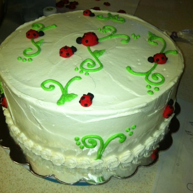Cake Pan Lady Mn