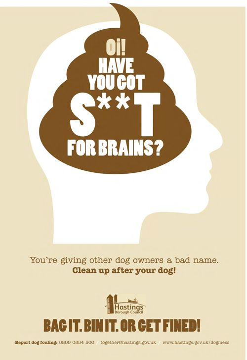 Oi! Have you got s**t for brains - Hastings Council
