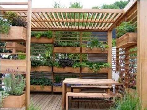 Terrasse d'immeuble abritant tout un ensemble de plantes aromatiques, salades et autres légumes
