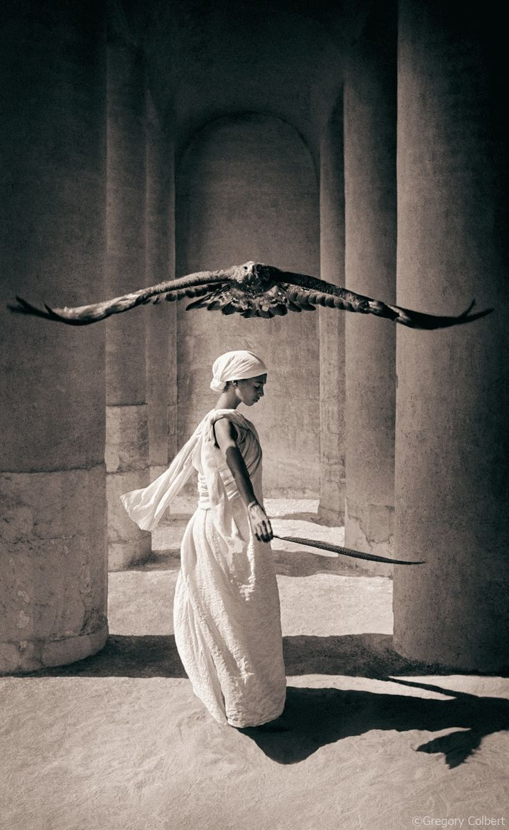 The Lady Falconer.                                     (Photo By: Gregory Colbert.)