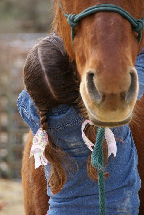 Every horse, at least once in their life, deserves to be loved by a little girl