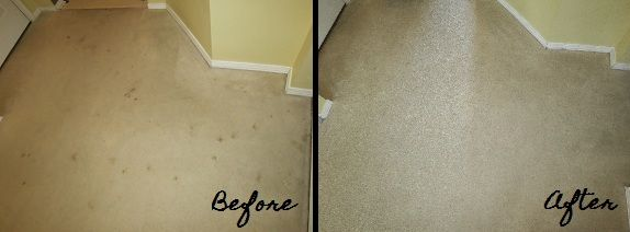 Use Vinegar And Essential Oil In A Rug Doctor To Clean Carpets. Much  Cheaper Than Shampoo. | Handy/Random Tips | Pinterest | Rug Doctor, ...