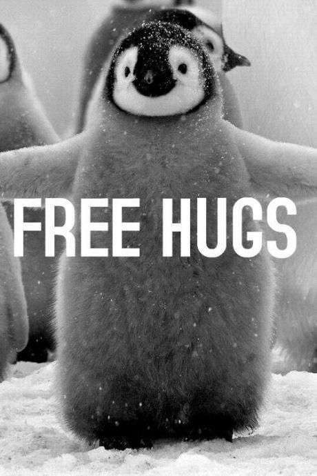 penguin hugs >