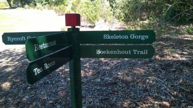 We love the Boekenhout Trail at Kirstenbosch.