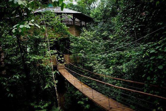 treehouse-resort-in-costa-rica