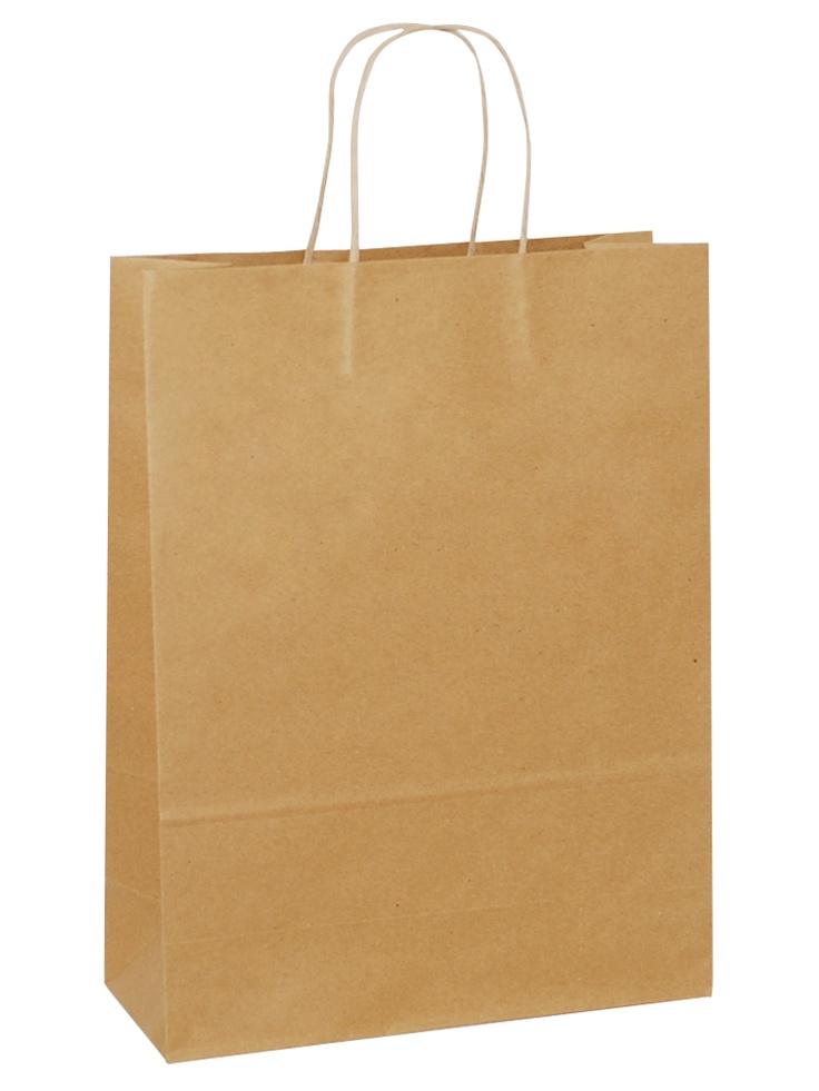 Introducing  Brown Carrier Bag Twisted Handle - Plain Brown Large size.Be the first to get it at our site