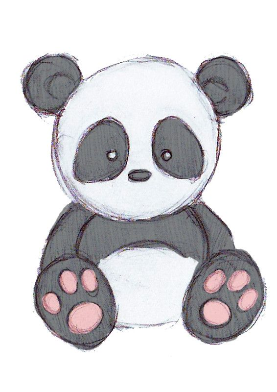 Cute Panda With Glasses Drawing