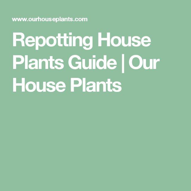 10 best House Plants Care Instructions images on Pinterest Air