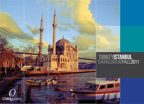 22 best Travel Brochure Designs images on Pinterest Travel - travel brochure