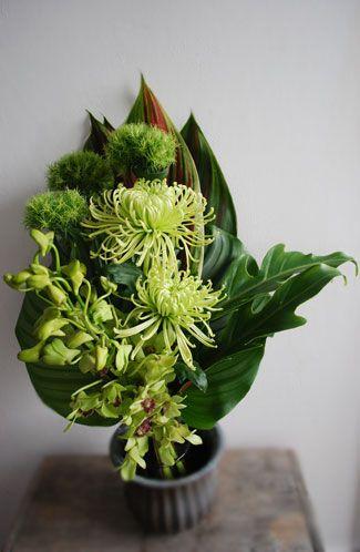 chrysanthemum :: green trix :: orchid :: xanadu :: calathea :: flag