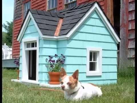 Best luxury dog houses