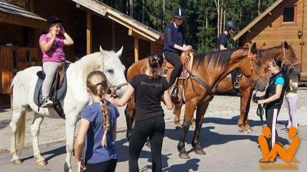 Čujte, čujte jazdci, rytieri a bojovníčky všetkých kráľovstiev... Na známosť sa všetkým dáva, že veľká jadzecká slávnosť sa toto leto očakáva! #Wachumba #Horses https://www.wachumba.eu/detske-sportove-tabory/detsky-jazdecky-tabor-horses?pid=47%0A%0A