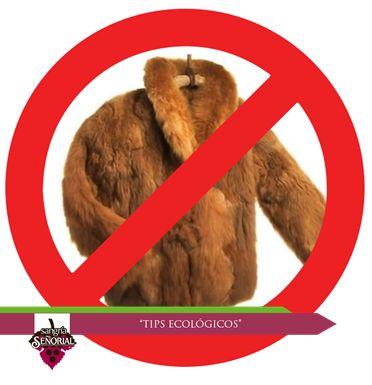 Nunca compres o utilices productos derivados de especies en peligro de extinción, como pieles de animales, huevos de tortuga o plumas de aves.