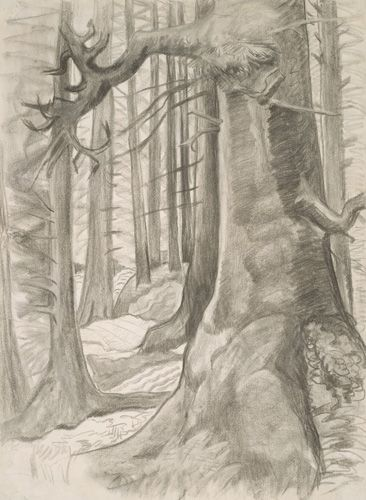 Friendly Cove, c. 1930. charcoal. Emily Carr. VAG 42.3.117
