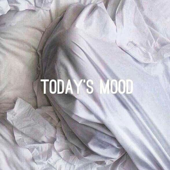 Can we please just stay in bed today