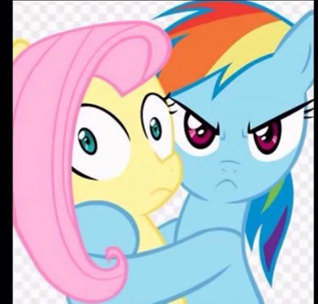 Fluttershy & Rainbow dash x #fast #cute #fluttershy # ...